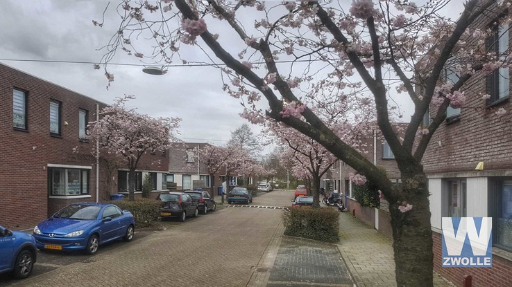 Puccinistraat - Foto: Wouter Steenbergen